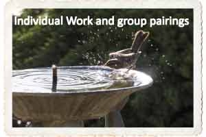 Individual Work and Group Pairings